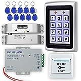 LIBO Kit de Sistema de Control de Acceso RFID Controlador de Acceso de Metal con Cerradura Eléctrica DC 12V para el Hogar/Oficina Sistema de Puerta de Entrada con 10 pulsadores de 125 kHz