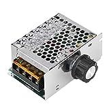 Bewinner Regulador de Voltaje Ajustable de 10V a 220V para Aparatos con Una Potencia Inferior a 4000W, como Horno Eléctrico, Calentador de Agua, Lámparas, Motor Pequeño y Más.