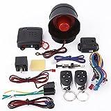 Sistema de alarma para automóvil, entrada sin llave del sistema de protección de seguridad de alarma de automóvil universal con 2 controles remotos Sirena