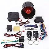 La Alarma del Coche - Sistema de Seguridad del Coche Delaman Sistema de Alarma de Coche Universal con la Sirena Remota Alarmas Universal Para Coche