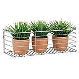 mDesign Estante de metal para baño, cocina, pasillo o lavadero – Estante de pared ancho en alambre de metal – Cestas de rejilla compactas – plateado