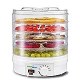 Green Blue GB190 Deshidratador con regulador de temperatura 35 - 70 °, secador de frutas, verduras, champiñones, hierbas, flores, carne, pescado, pasta, 5 placas bandejas de 3,5 cm 250 W