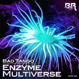 Multiverse (Original Mix)