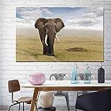 KWzEQ Imprimir en Lienzo Decoración del hogar de la Imagen del Arte de la Pared del Elefante Africano para Carteles de la Sala de estar50x75cmPintura sin Marco