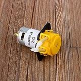 Bomba dosificadora, Bomba peristáltica de dosificación pequeña Bomba dosificadora Cabezal de Bomba de Manguera para Laboratorio de acuarios Agua de Acuario